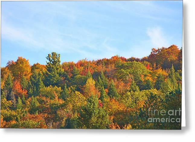 Greeting Card featuring the photograph Couleurs D' Automne by Aimelle