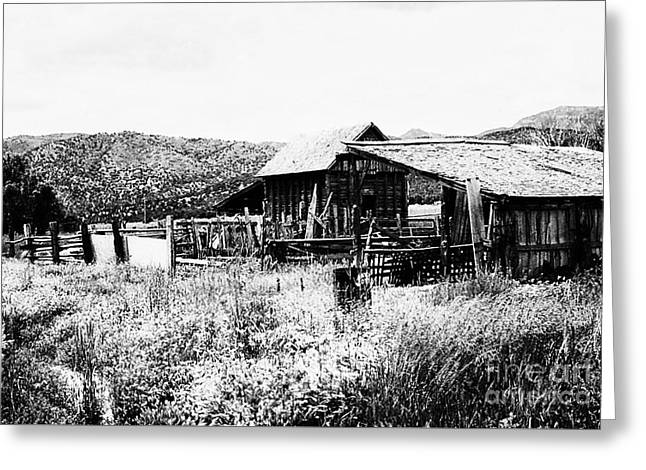 Country Barn 3 Greeting Card by Chris Berry