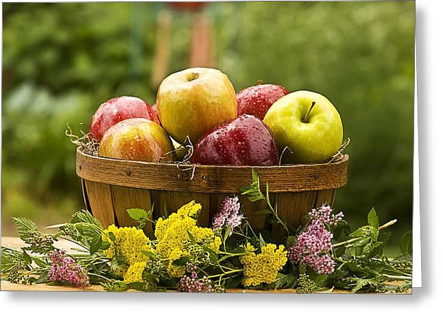 Country Basket Of Apples Greeting Card by Trudy Wilkerson
