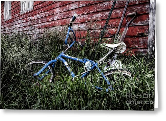 Greeting Card featuring the photograph Country Bicycle by Brad Allen Fine Art
