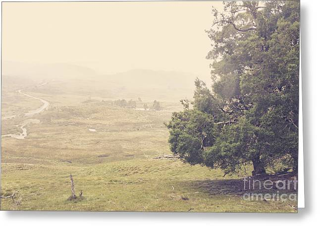 Country Farm Wilderness. Rural Australia Landscape Greeting Card by Jorgo Photography - Wall Art Gallery