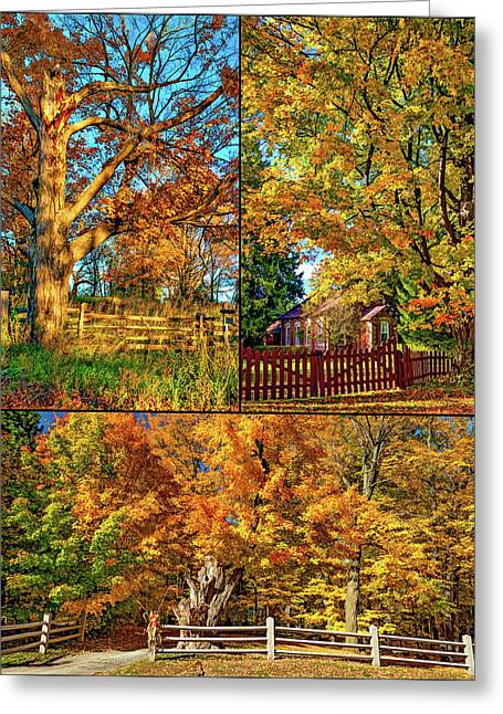 Country Fences Collage - Paint Greeting Card
