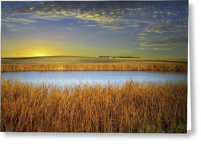 Country Field 2 Greeting Card