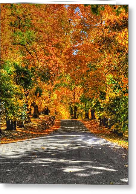 Country Lane In Fall Greeting Card by Linda Covino
