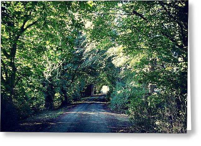 Country Lane, Tree Tunnel Greeting Card