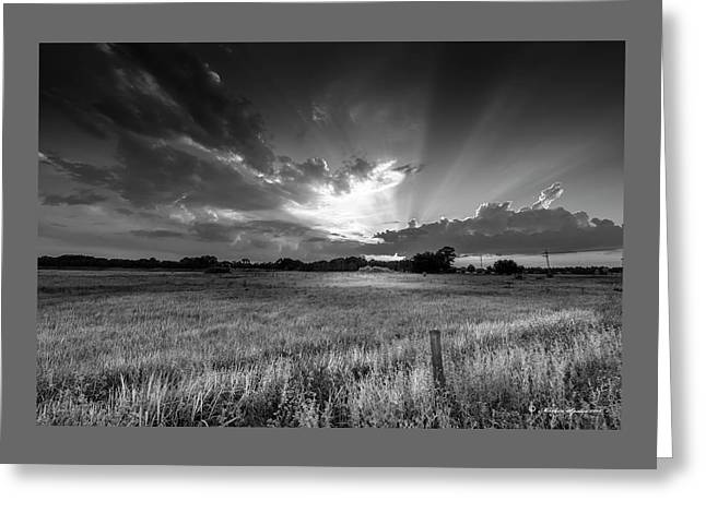 Country Life B/w Greeting Card