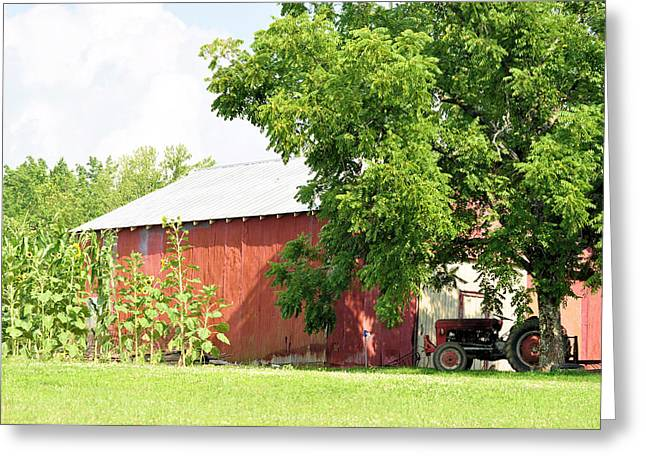 Country Life Greeting Card by Jan Amiss Photography