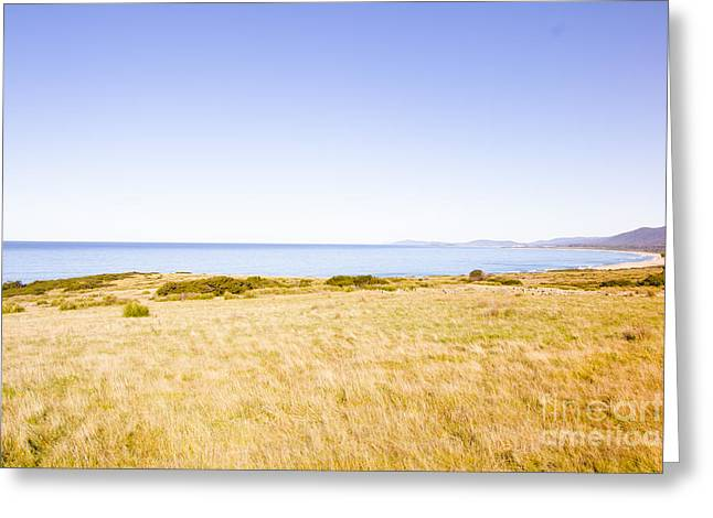 Country Meets Ocean  Greeting Card by Jorgo Photography - Wall Art Gallery