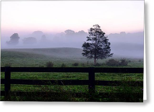 Country Morning Fog Greeting Card