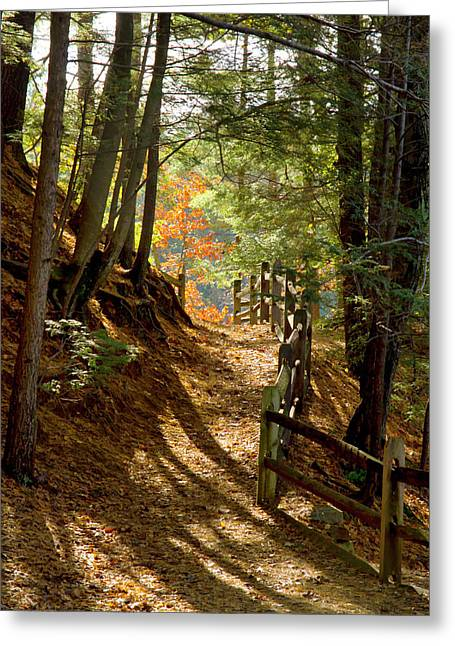 Greeting Card featuring the photograph Country Path by Arthur Dodd