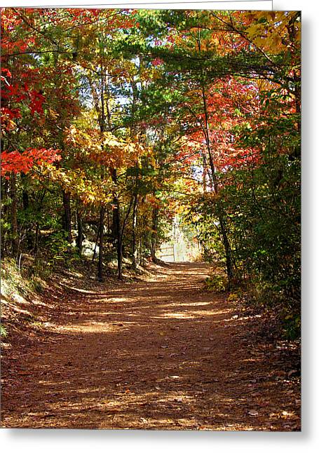 Country Path Greeting Card by Ralph  Perdomo