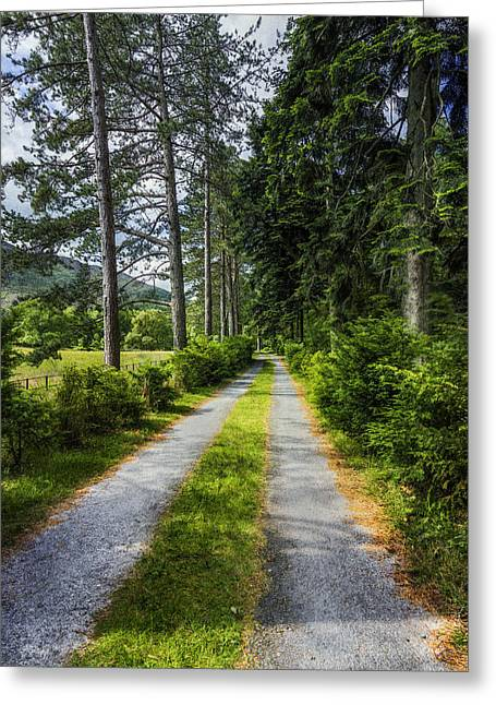 Country Path Walks Greeting Card by Ian Mitchell