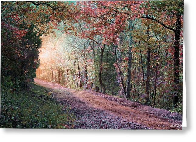 Country Road Greeting Card by Bill Stephens