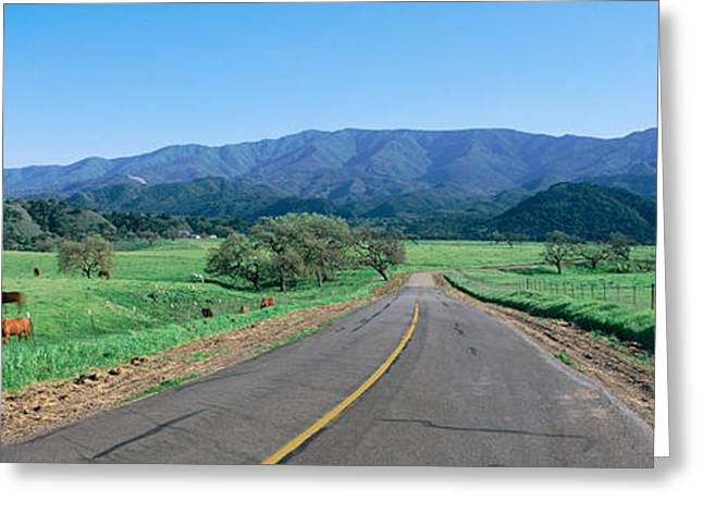 Country Road, California Greeting Card by Panoramic Images