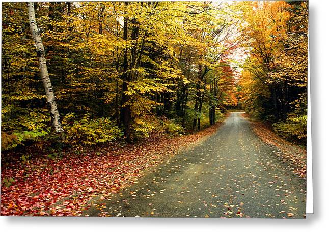 Country Road In Autumn Colors Greeting Card by Tony Ramos