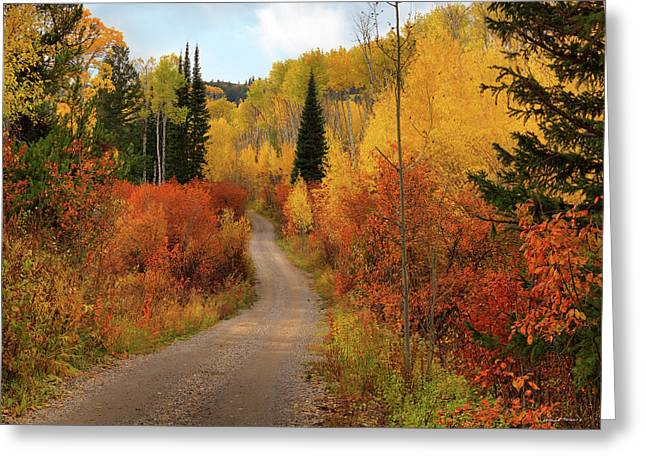 Country Road In Autumn Greeting Card by Leland D Howard