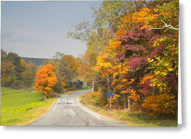 Greeting Card featuring the photograph Country Road In The Fall by Diannah Lynch