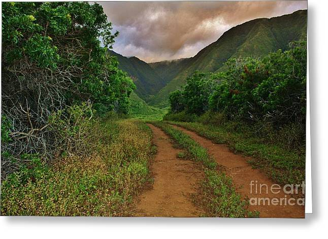 Country Road Kalaupapa, Molokai Greeting Card by Craig Wood