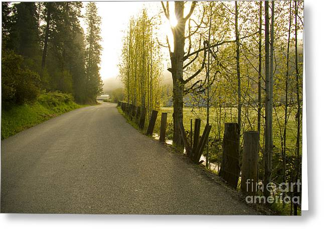 Country Road Greeting Card by Idaho Scenic Images Linda Lantzy