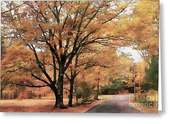 Country Road Greeting Card by Marcia Lee Jones