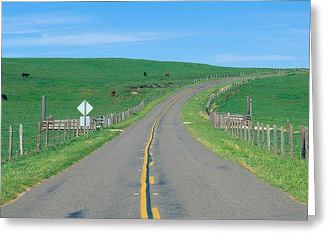 Country Road Separating Pastures Greeting Card by Panoramic Images