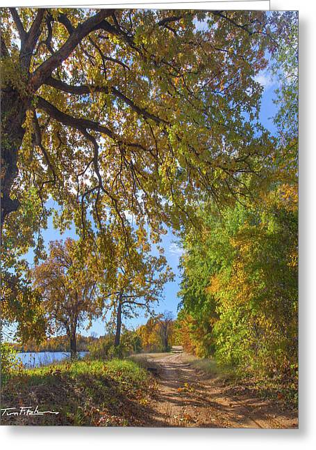 Country Road Greeting Card by Tim Fitzharris
