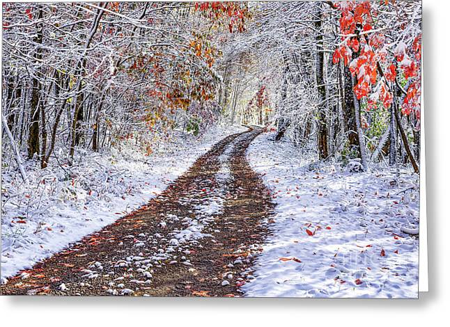 Country Road With Autumn Snow  Greeting Card