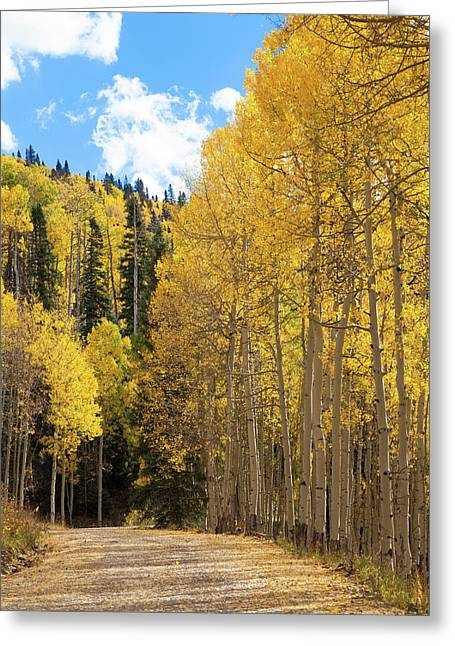 Greeting Card featuring the photograph Country Roads by David Chandler