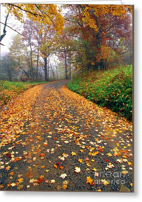 Country Roads Take Me Home Greeting Card by Thomas R Fletcher