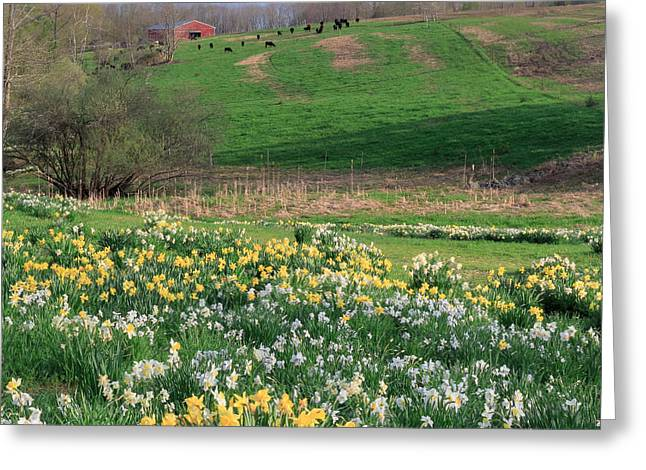 Country Spring Square Greeting Card by Bill Wakeley