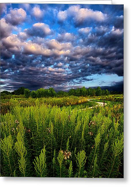 Country Strolling Greeting Card by Phil Koch