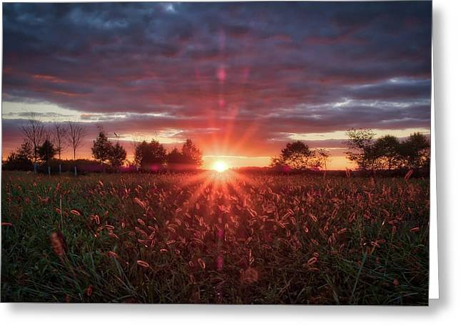 Greeting Card featuring the photograph Country Sunset by Mark Dodd