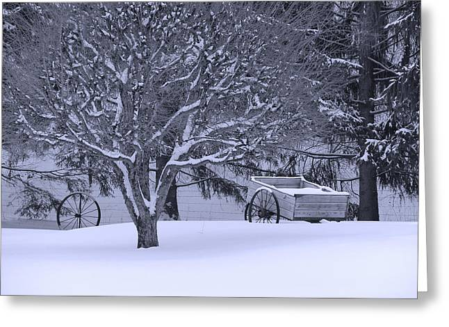 Indiana Winters Digital Art Greeting Cards - Country Winter Greeting Card by Bruce McEntyre