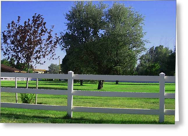 Greeting Card featuring the photograph Country Yard by Tammy Sutherland