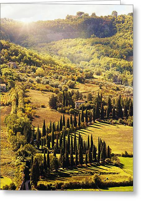 Countryside In Tuscany Italy With Cyprus Trees Greeting Card by Susan Schmitz