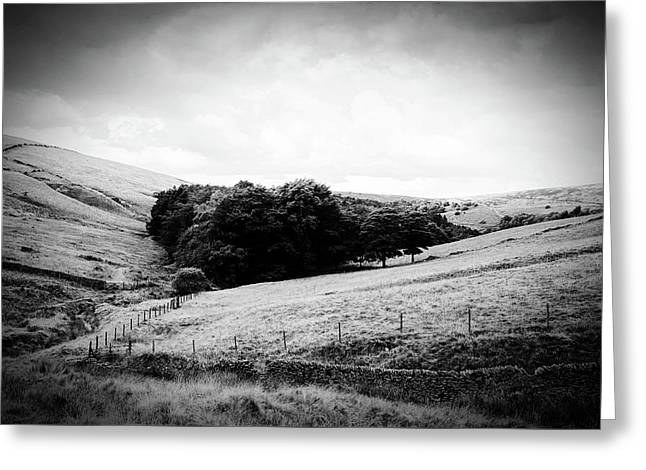 Countryside Morning Greeting Card
