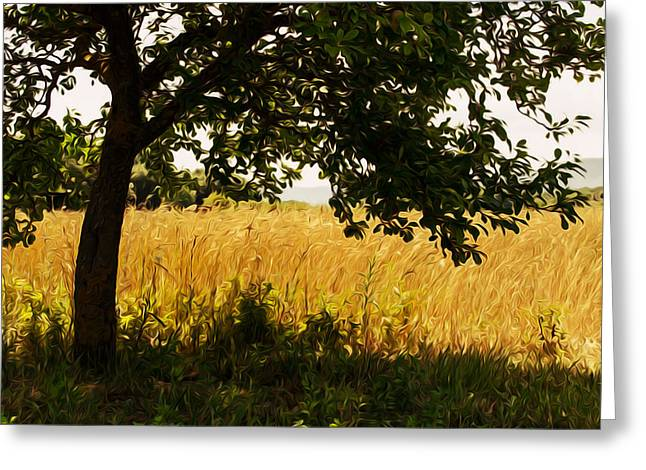 Countryside Of Italy  Greeting Card by Andrea Mazzocchetti