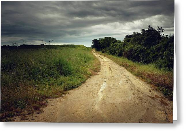 Countryside Trail Greeting Card by Carlos Caetano