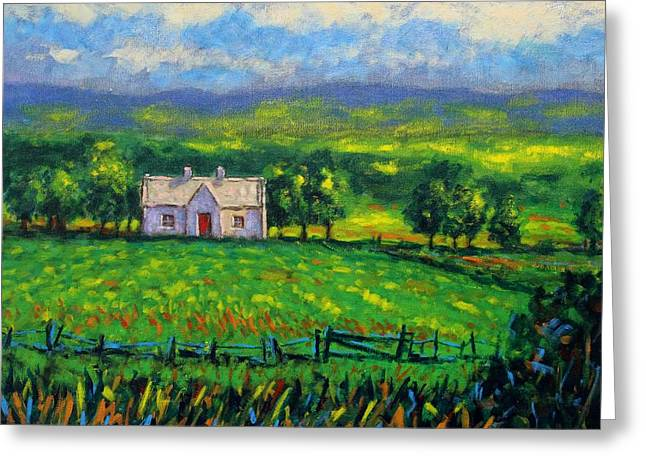 County Wicklow Ireland Greeting Card by John  Nolan