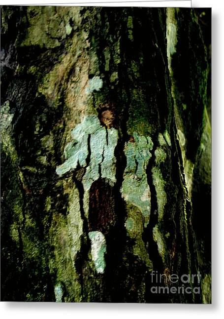 Couple On A Tree Greeting Card