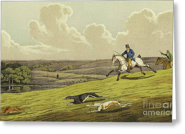 Coursing Greeting Card by Henry Thomas Alken
