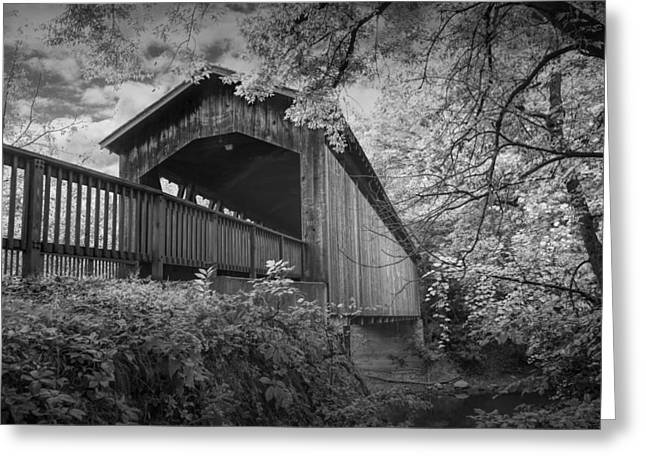 Covered Bridge On The Thornapple River Greeting Card by Randall Nyhof