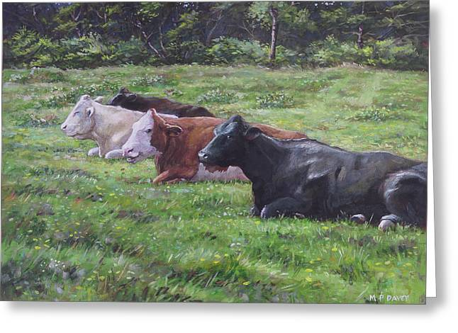 Cow Line Up In Field Greeting Card