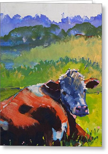 Cow Lying Down On A Sunny Day Greeting Card