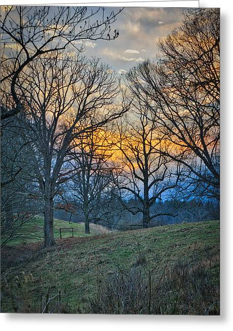 Cow Pasture At Dusk Greeting Card
