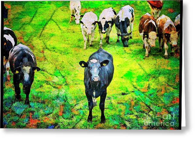 Greeting Card featuring the photograph Cow Patch by Craig J Satterlee