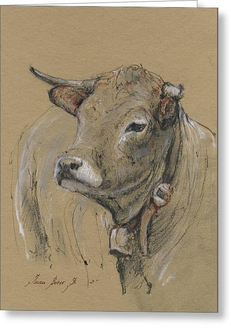 Cow Portrait Painting Greeting Card by Juan Bosco