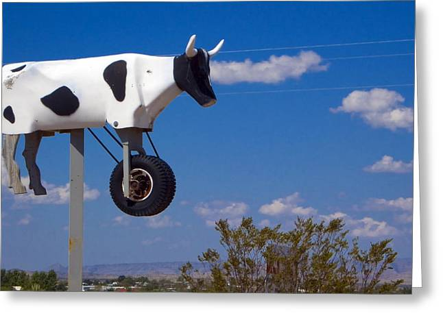 Cow Power Greeting Card by Skip Hunt