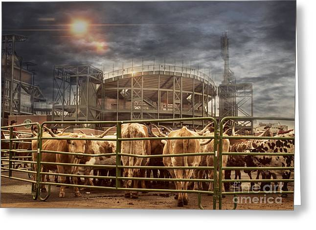 Cow Town Greeting Card