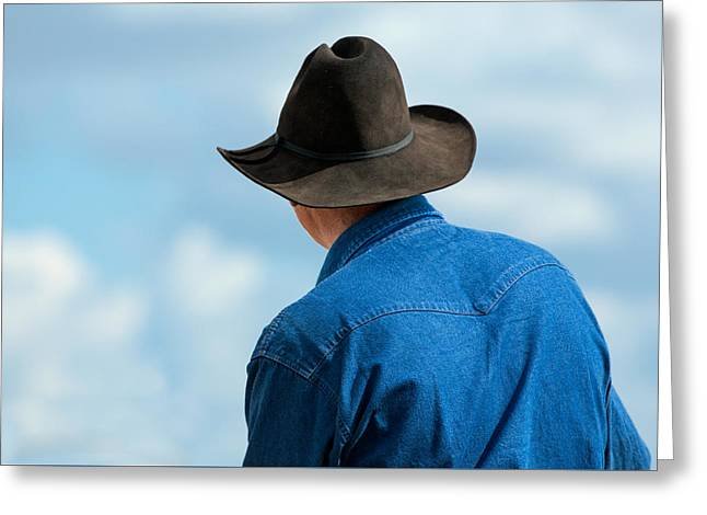 Cowboy Back Greeting Card by Todd Klassy